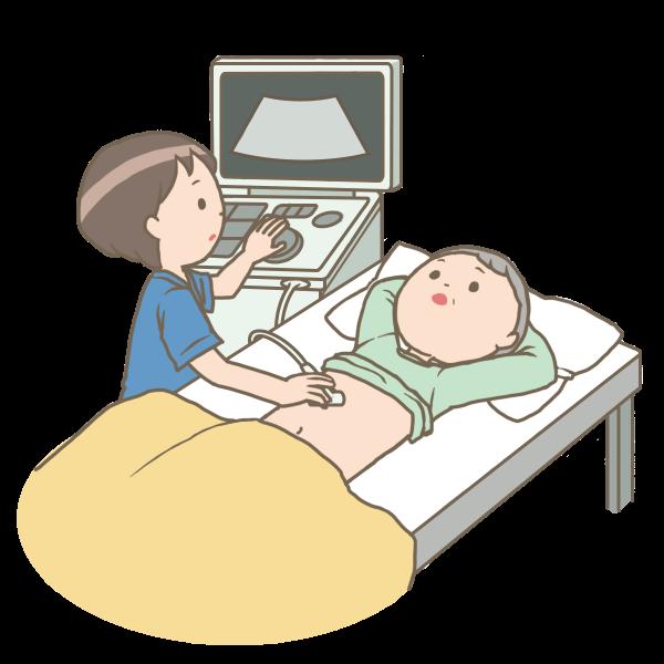 腹部超音波検査のイラスト